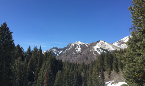 Our Snowshoeing Adventure